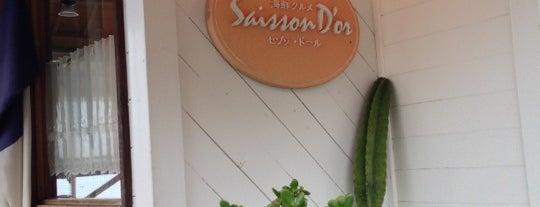 Shokudo Saison d'Or is one of Fukuoka Hit List.