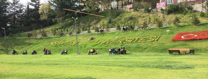 Nişantaşı Üniversitesi is one of unıv.