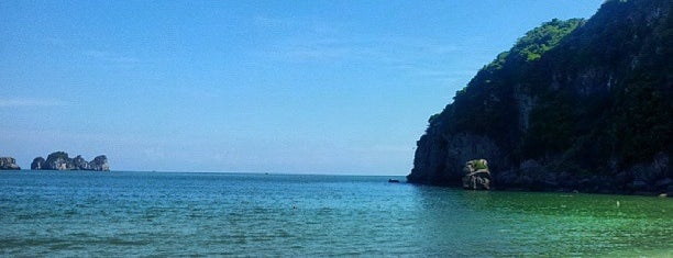 Cat Ba Beach Resort is one of Vietnam beaches.