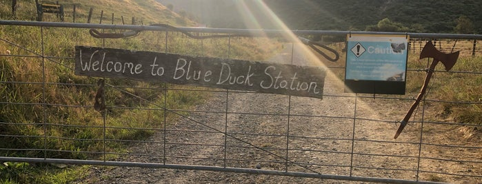 Blue Duck Cafe is one of Ozzie Kiwi.