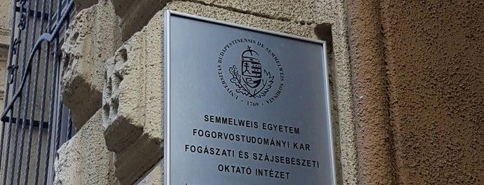 Fogászati és Szájsebészeti Oktató Intézet (Stomatológia) is one of Adam : понравившиеся места.