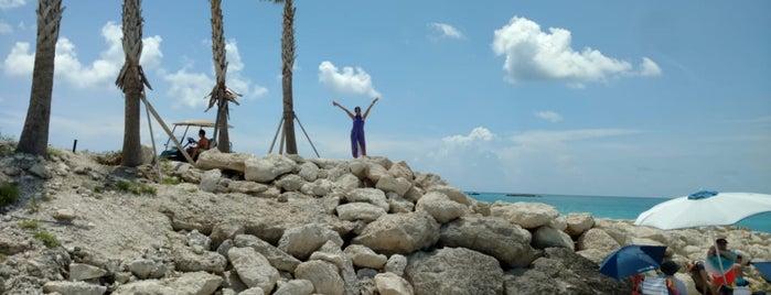 Paradise Beach is one of Lieux qui ont plu à Daniel.