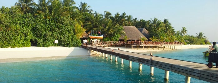 Vilu Reef Beach Resort & Spa, Maldives is one of Jacobさんのお気に入りスポット.