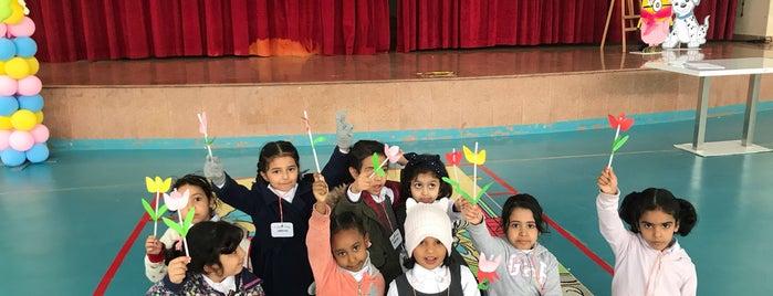 AlHussan Private Schools | مدارس الحصّان الأهلية. is one of สถานที่ที่ Sultan ถูกใจ.