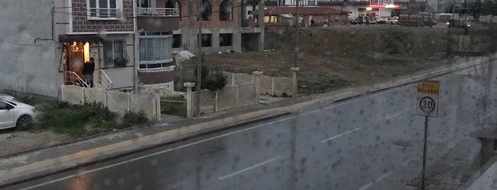 Gala Evleri is one of Deniz'in Beğendiği Mekanlar.