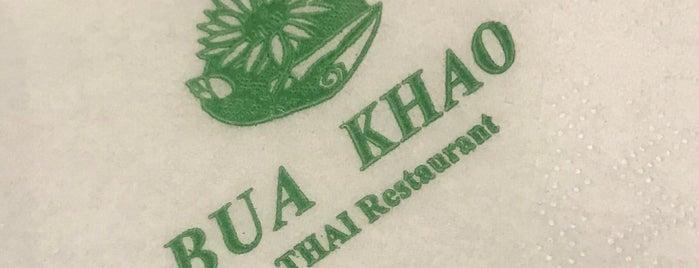 Bua Khao is one of My insights on Maadi.