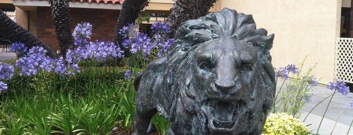 Vanguard University of Southern California is one of Richard'ın Beğendiği Mekanlar.