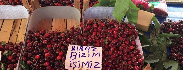 Tekirdağ 52.Kiraz Festivali is one of BuRcak : понравившиеся места.