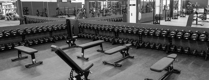 FITINN Fitnessstudio is one of 83'ın Beğendiği Mekanlar.