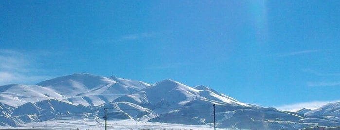 Erzurum is one of Check-in 4.