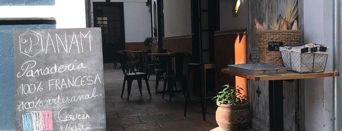 Panam Panadería Francesa is one of México.