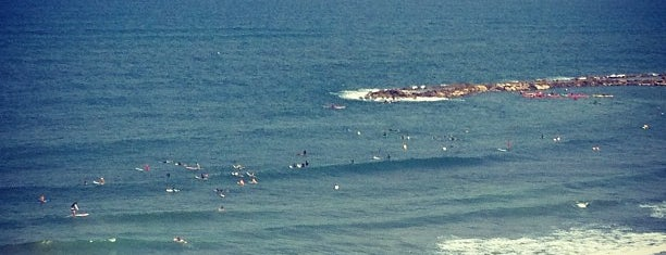 Surf House is one of Tel Aviv.