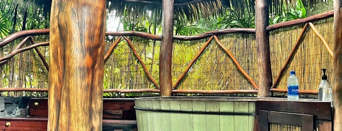 Mama Lahoa Hot Tubs and Massage is one of Big Island.
