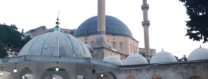 Mevlid-i Halil Camii is one of Urfa.