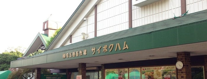 サイボクハム本店 is one of Lieux qui ont plu à Tanaka.