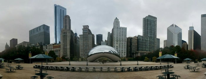 Millennium Park Chiropractic is one of Chicago.