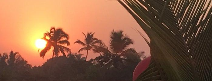 Club Fresh is one of Goa, India.