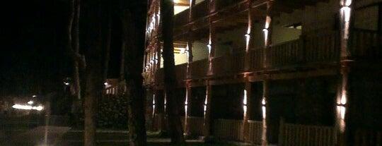 Lopota Resort | ლოპოტა რეზორტი is one of Lugares favoritos de Michael.