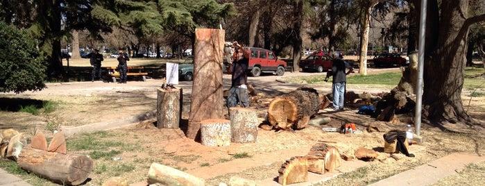 Paseo Del Bicentenario Mendoza is one of Mendoza de dia.