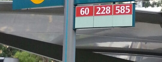 Bus Stop 84501 (Christ Church) is one of Transport SG.