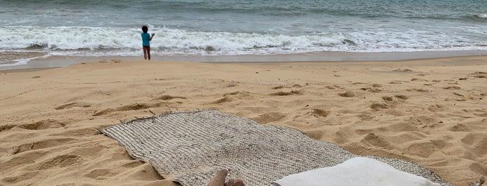 Praia Da Tartaruga is one of Trancoso.