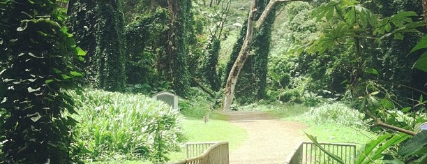 Paradise Park is one of Favorite Local Kine Hawaii.
