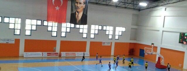 Atatürk Spor Salonu is one of Locais curtidos por Ümit.
