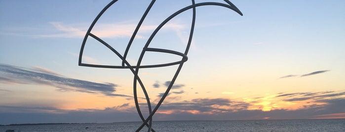 Skulptuur Julgetele ja teotahtelistele inimestele is one of Tallinn delights.