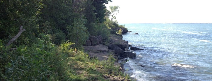 North Shore Alvar Nature Preserve is one of สถานที่ที่บันทึกไว้ของ Noel.