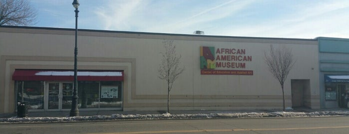 African American Museum is one of New York City.