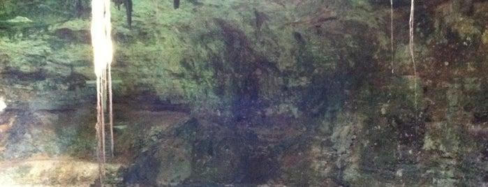 Cenote Hubiku is one of erykaceaさんの保存済みスポット.