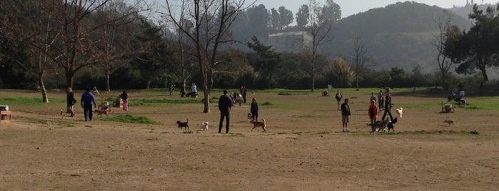 Laurel Canyon Dog Park is one of Wanderlust.