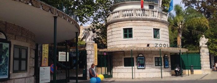 Jardim Zoológico de Lisboa is one of Locais Visitados.