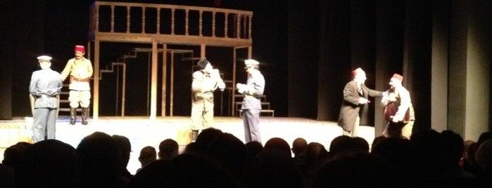 Devlet Tiyatrosu Haluk Ongan Sahnesi is one of uğradıklarım.