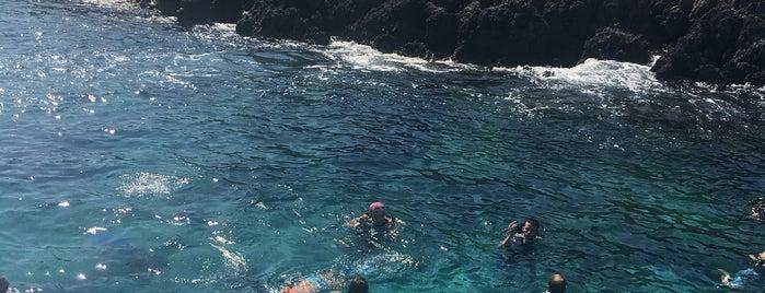 Pina Reef Dive Spot is one of Çağan 님이 좋아한 장소.