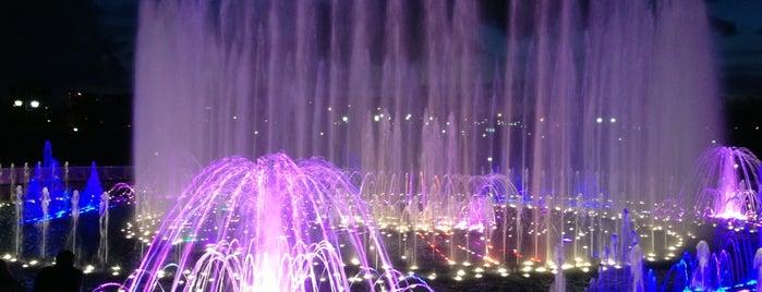 Светомузыкальный фонтан is one of Москва лето 2017.
