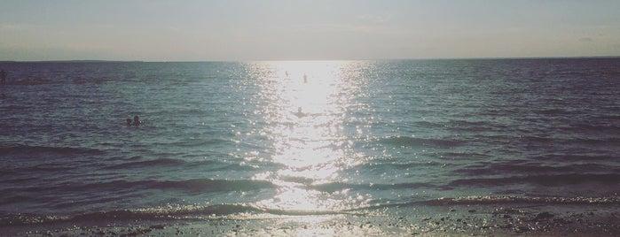 West Meadow Beach is one of Tempat yang Disukai S.