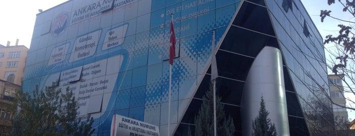 Ankara Numune Eğitim ve Araştırma Hastanesi Kolej Semt Polikliniği is one of İŞYERLERİ.