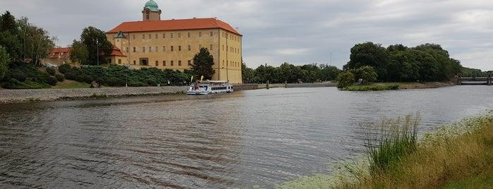 Cyklo/In-line stezka Poděbrady – Nymburk is one of สถานที่ที่ Michal ถูกใจ.