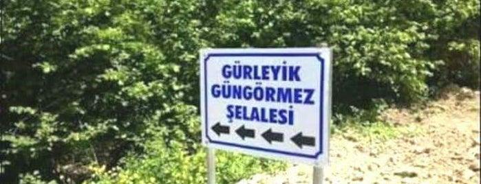Eskişehir mihalıççık Gürleyik Köyü is one of Gidilecek.