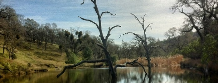 Henry W. Coe State Park is one of Somebody recommended.