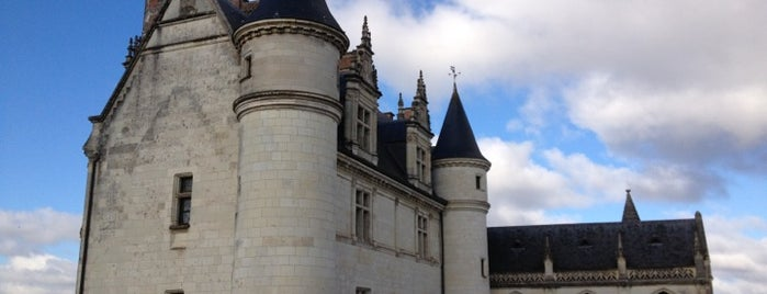 Château d'Amboise is one of 「带一本书去巴黎」.