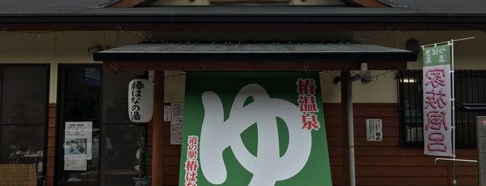 道の駅 椿はなの湯 is one of 高井 님이 좋아한 장소.
