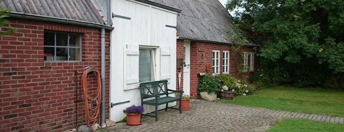 """Ferienhaus """"MoMa"""" is one of Lieux qui ont plu à Nim."""