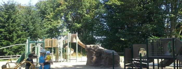 Bayview Playground is one of Lugares favoritos de DenMom & MoMo.