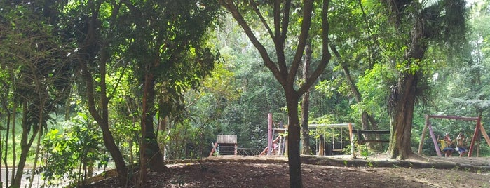 Parque Municipal Chico Mendes is one of Carlosさんの保存済みスポット.