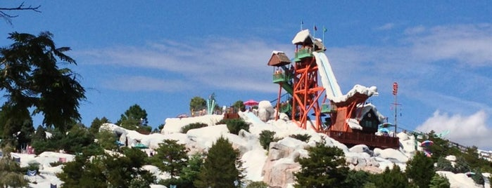 Disney's Blizzard Beach Water Park is one of USA.