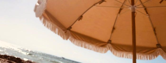 The Beach @ Soho Beach House is one of Lugares favoritos de Chris.