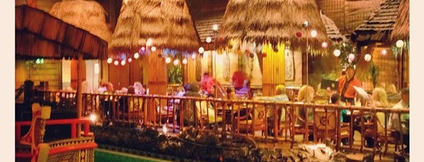 Tonga Room & Hurricane Bar is one of sf to do.