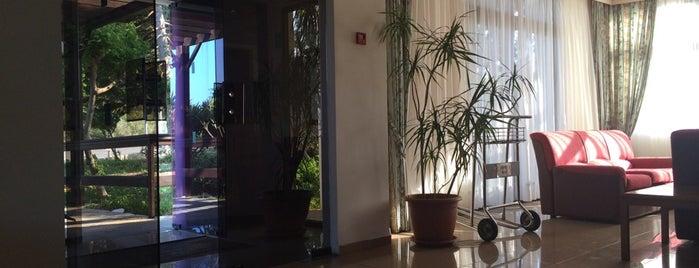 Harry's hotel is one of Orte, die Ktot gefallen.